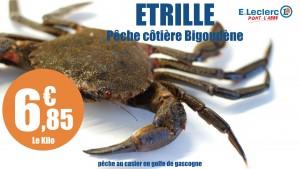 etrille-1920.001