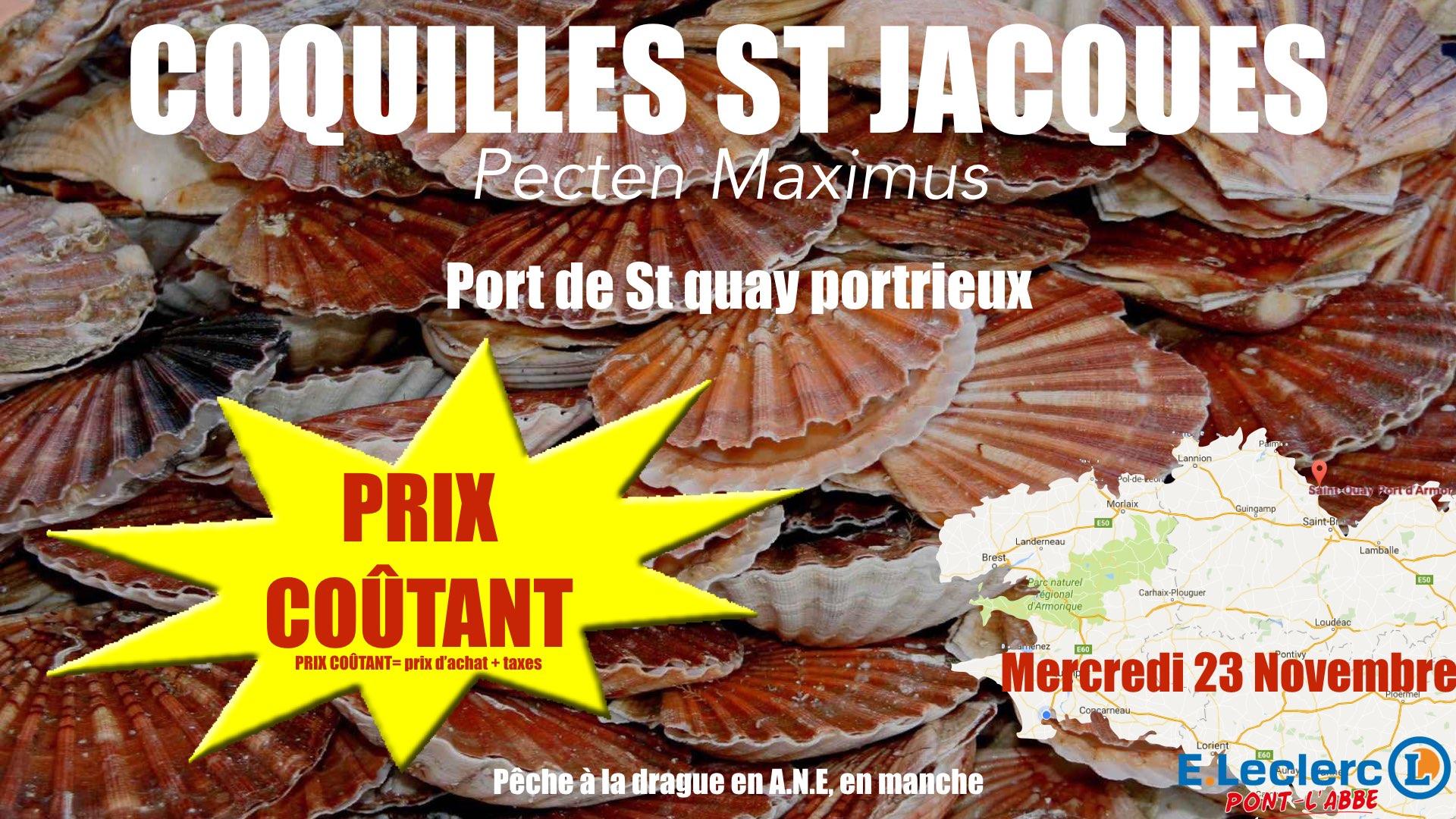 Coquille St Jacques Prix Coutant1 001 Leclerc Pont L Abbe