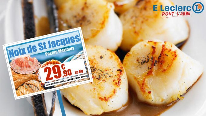 coquille-st